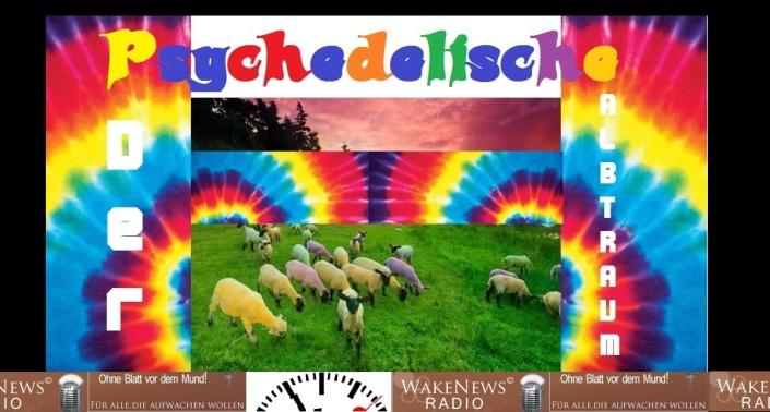 Der psychedelische Albtraum + logo