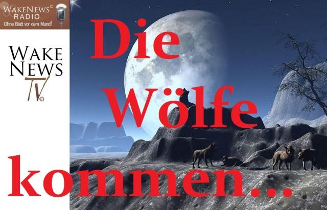 Die Wölfe kommen...