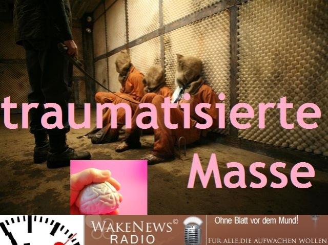 traumatisierte Masse