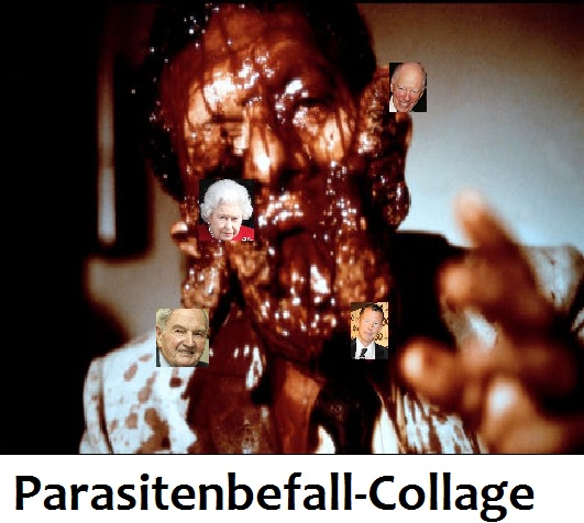 Parasitenbefall
