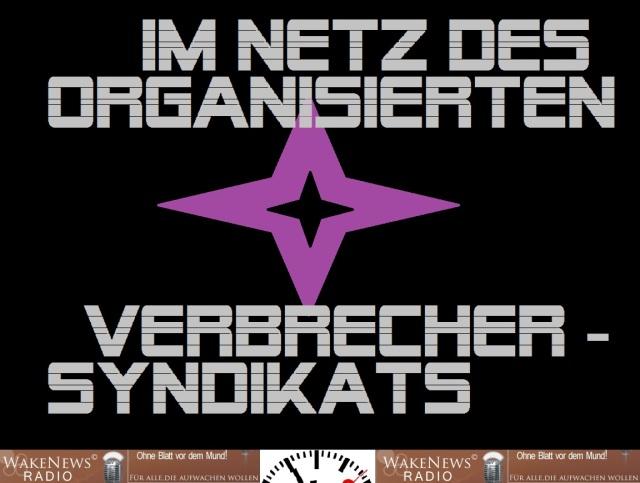 Im Netz des Organisierten Verbrecher-Syndikats