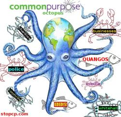 commonpurposeoctopus300x