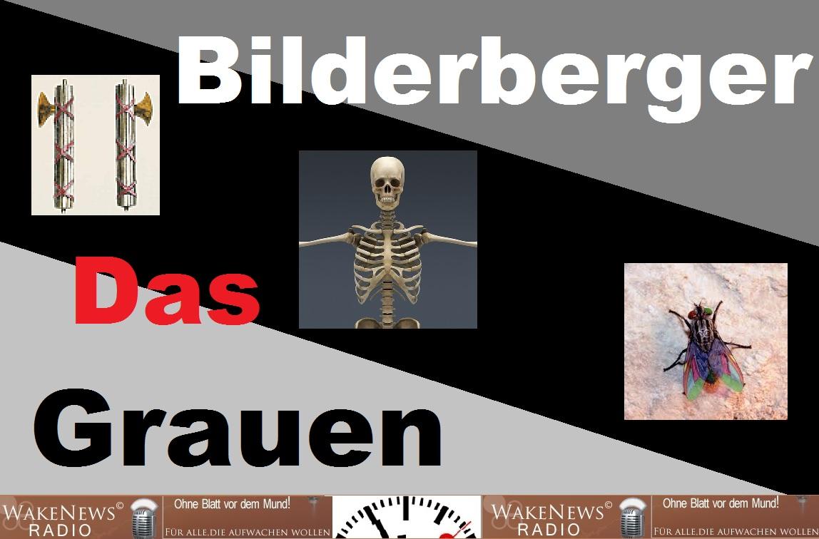 Das Bilderberger Grauen Wake News Radio TV