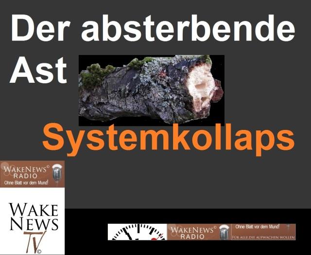 Der absterbende Ast - Systemkollaps vorhergesagt