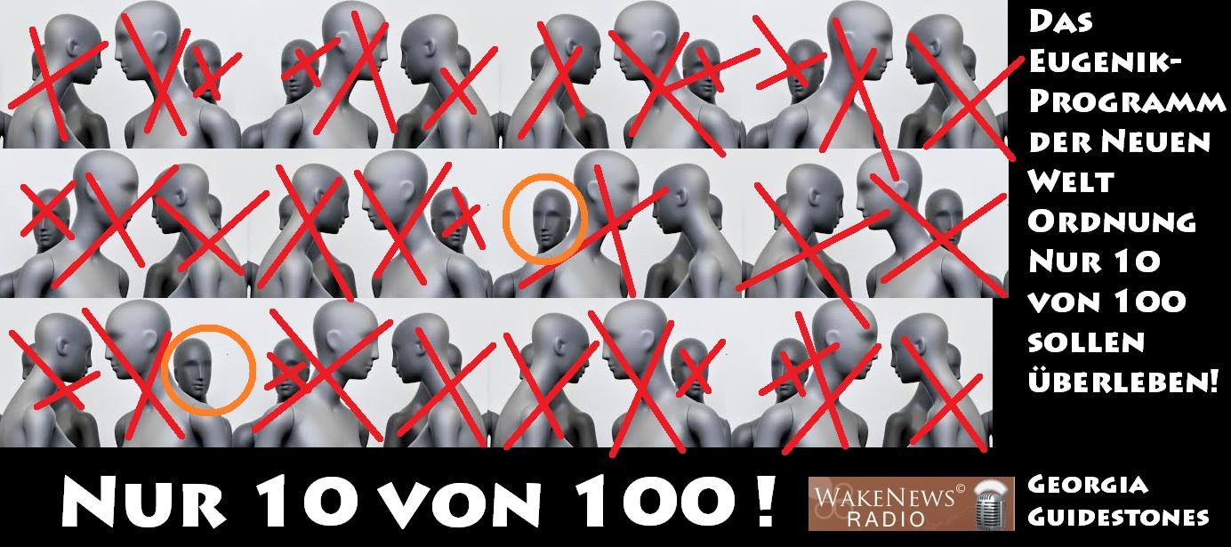 Nur 10 von 100 sollen überleben - Eugenik-Programm der NWO
