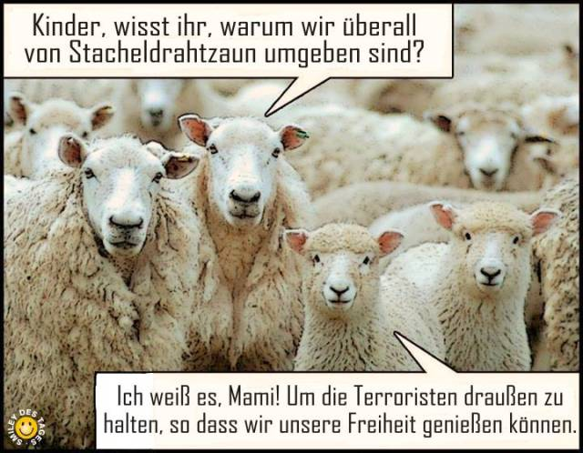 sheeple_05_german
