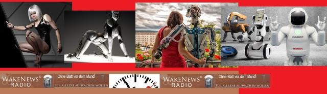 Roboterisierung der Gesellschaft