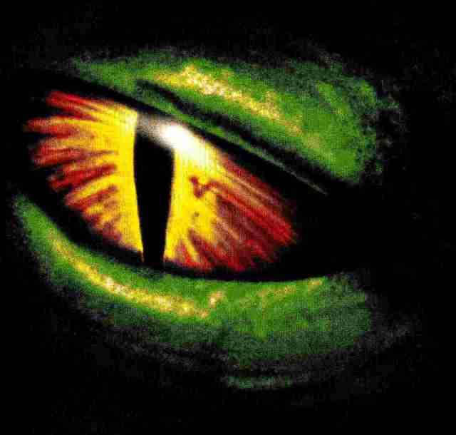Repto-Auge2