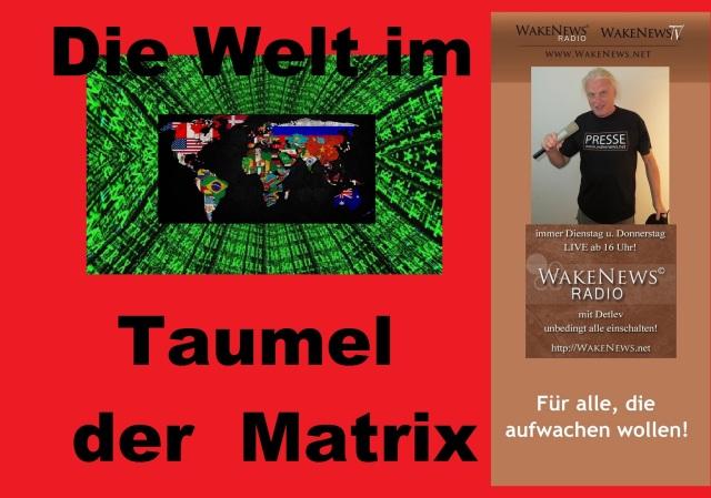 Die Welt im Taumel der Matrix
