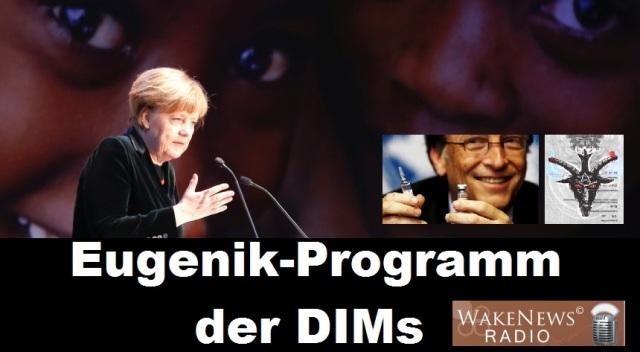 Eugenik-Programm der DIMs