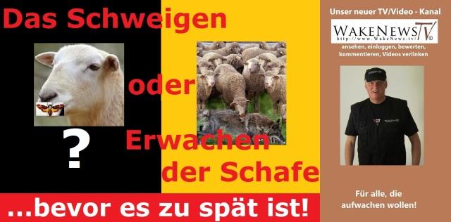 Das Schweigen oder Erwachen der Schafe
