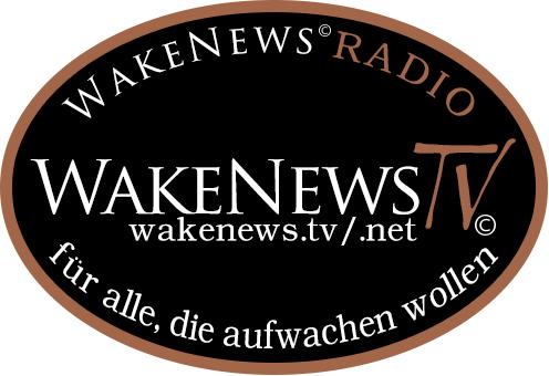 Wake News Aufkleber 1