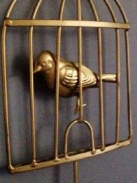Gold Vogel im Käfig