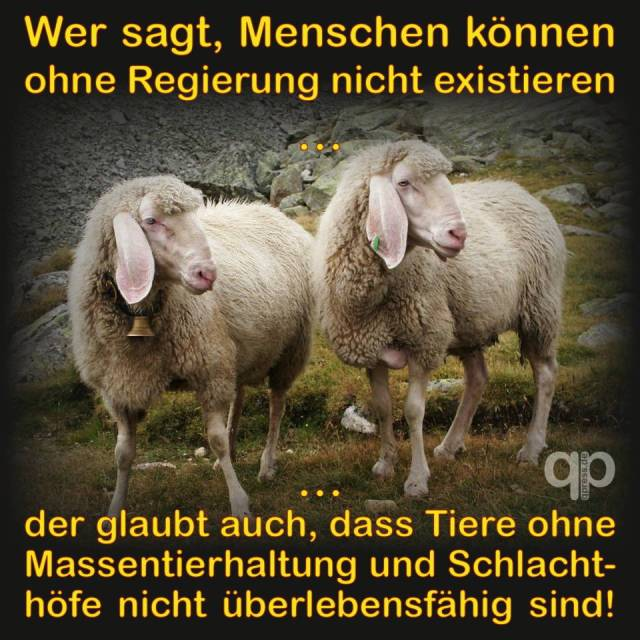 Schafe-die-glauben-menschen-oennten-nicht-ohne-Regierung-existieren
