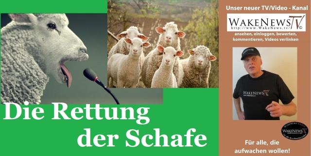 Die Rettung der Schafe