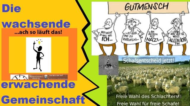 Wachsende Gemeinschaft der Erwachenden und Gutmenschen-Schafe