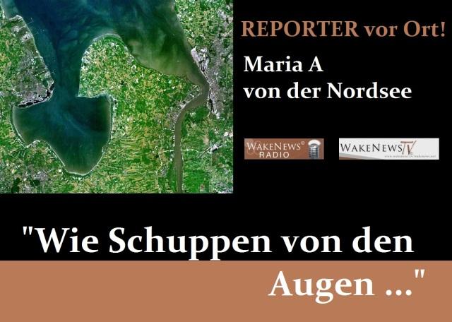 Wie Schuppen von den Augen - Reporter vor Ort - Maria A