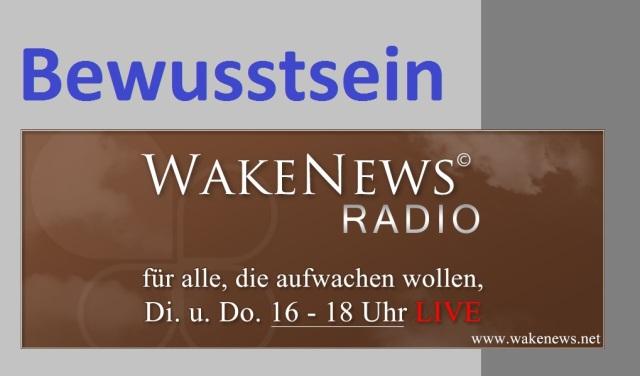 Bewusstsein Wake News