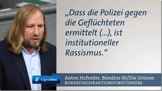 anton-hofreiter-bundnis-grune-die-grunen-institutioneller-rassismus