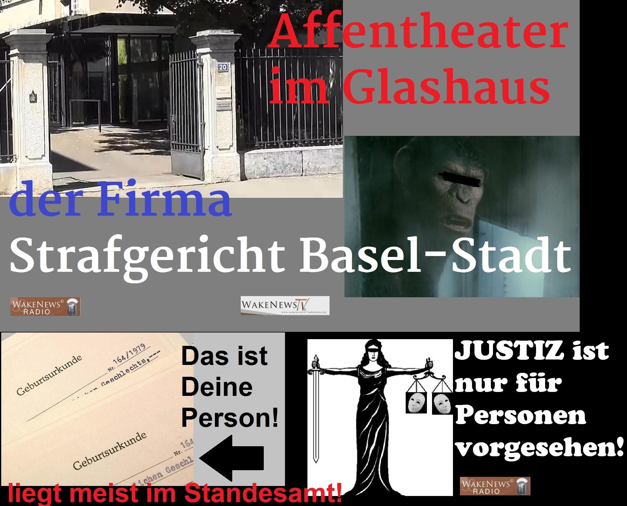 Affentheater im Glashaus der Firma Strafgericht Basel-Stadt – Wake ...